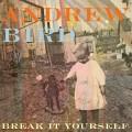 Andrew Bird : tracklist et pochette de Break It Yourself