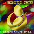 Masta Ace - MA DOOM: Son Of Yvonne