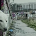 Radiohead s'associe avec Jude Law pour un film Greenpeace