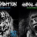 50 Cent sort le projet Animal Ambition en janvier
