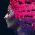 Steven Wilson - Hand.Cannot.Erase.
