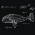 British Sea Power - Sea Of Brass