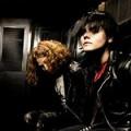 My Chemical Romance sort un coffret DVD live